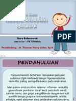 Case HSP