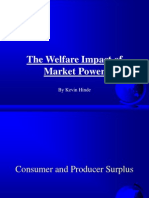 Welfare Effects of Market Power