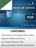 Presentacion - Base de Datos C. - Tema 1