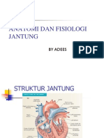 Anatomi Dan Fisiologi Jantung