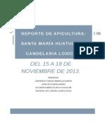 Reporte de Apicultura Huatulco-loxicha