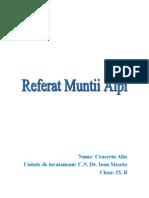 Muntii Alpi - Varful Mont Blanc - Mer de Glace
