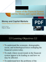 The Future of Financial System and the Money and Capital Markets