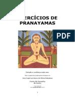 31058476 Exercicios de Pranayamas Portugues 131006080656 Phpapp02