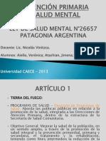 Patagonia Ley de Salud Mental