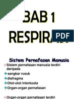 CAPTER 1-BM