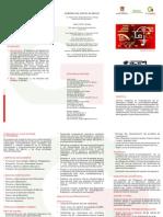 Isceem PDF Trip Mae 14-16