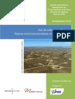 Gaz de schiste en France Enjeux environnementaux et économiques