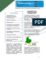 2013 Boletin Epidemiologico Semana 06