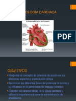 Potencial Cardiaco