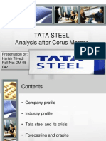 TATA STEEL INDIA Assignment v Harish Trivedi Dm-08-042