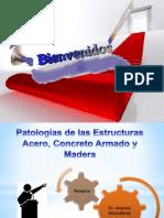 Patologías de las Estructuras (Prof. Antonio Amundaray).pptx
