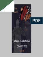 cmihuleacgarsoniera