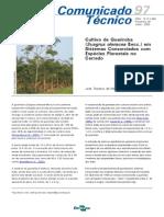 Cultivo de Guariroba (Syagrus Oleracea Becc.) Em Sistemas Consorciados Com Especies Florestais No Cerrado