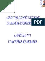 Capítulo 1 - CONCEPTOS GENERALES