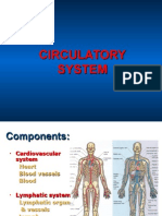 Sept 24 Circulatory System09 Students