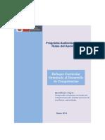 Enfoque Curricular Orientado Al Desarrollo de Competencias