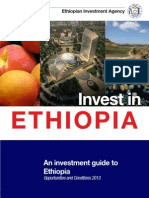 Investment Guide 2013