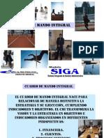 cuadrodemandointegral-101117151954-phpapp02