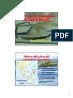 08 - Cultivo de Camarón de agua dulce.pdf