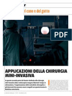 Chirurgia Mini Invasiva seconda parte