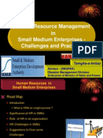 The Role of Human Resources in SMEs