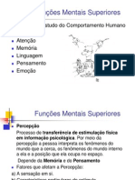 funcoes_mentais_superiores (1)