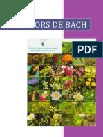 Flores de Bach, características