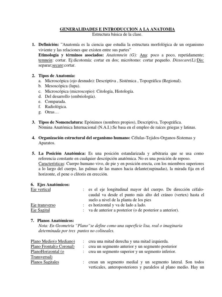 Lujo Cuál Es La Anatomía Embellecimiento - Imágenes de Anatomía ...