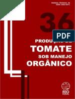 36 Tomate Orgânico