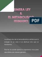 Primera Ley y Metabolismo[1]