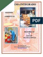 Curso de Integracion de Sistemas de Gestion Ambiental-seguridad y Salud Ocupacional