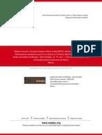 45874105.pdf
