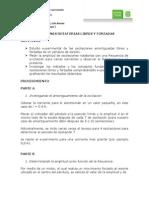 Informe_-_oscilaciones_rotatorias_libres_y_forzadas_(sergio).docx