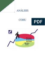 Administracion - Analisis COHU