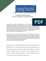 Exagium - Vitor Cei - Um corpo inundado de ódio