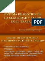 Sistema de Gestion en Seguridad y Salud