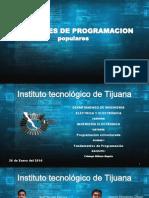 Top de lenguajes de programacion.pptx
