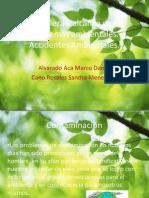 Naturaleza y alcance de los problemas ambientales.pptx