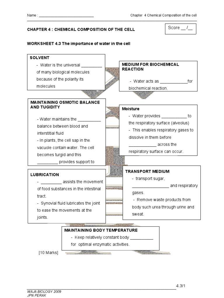 WORKSHEET 45 Formation and Break Down of Disaccharides and – Constructive Travel Worksheet