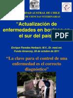 Actualización de enfermedades en vovinos en el sur de chile