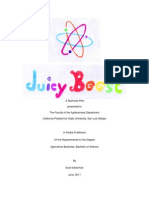 Juicy Boost- A Business Plan