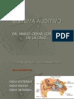 Estructura Del Sistema Auditivo1