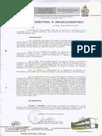 Resolucion de Practicas Pre Profesionales[1]