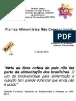 Apresentação ACESPA PErmacultura 15 junho 2013