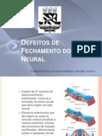 Defeitos Fecham Tubo Neur