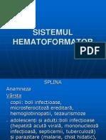 Curs Sistemul Hematopoietic