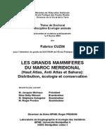 Grands Mamm Maroc Cuzin_PhD