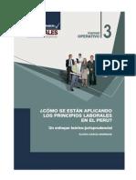 Como se estan aplicando principios laborales en el Perú