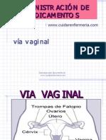 Viaveginal Www.cuidarenfermeria.com